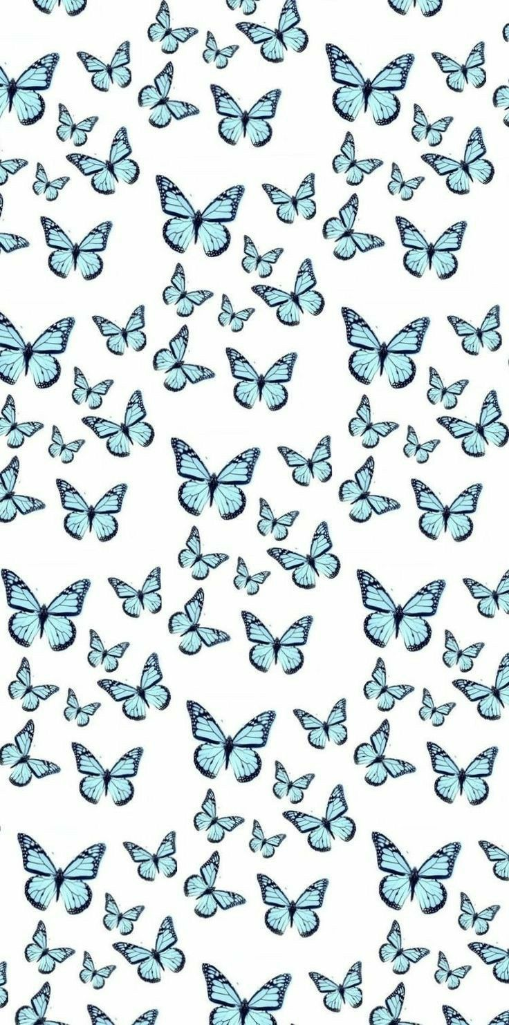 Aesthetic Blue Butterfly Backgrounds