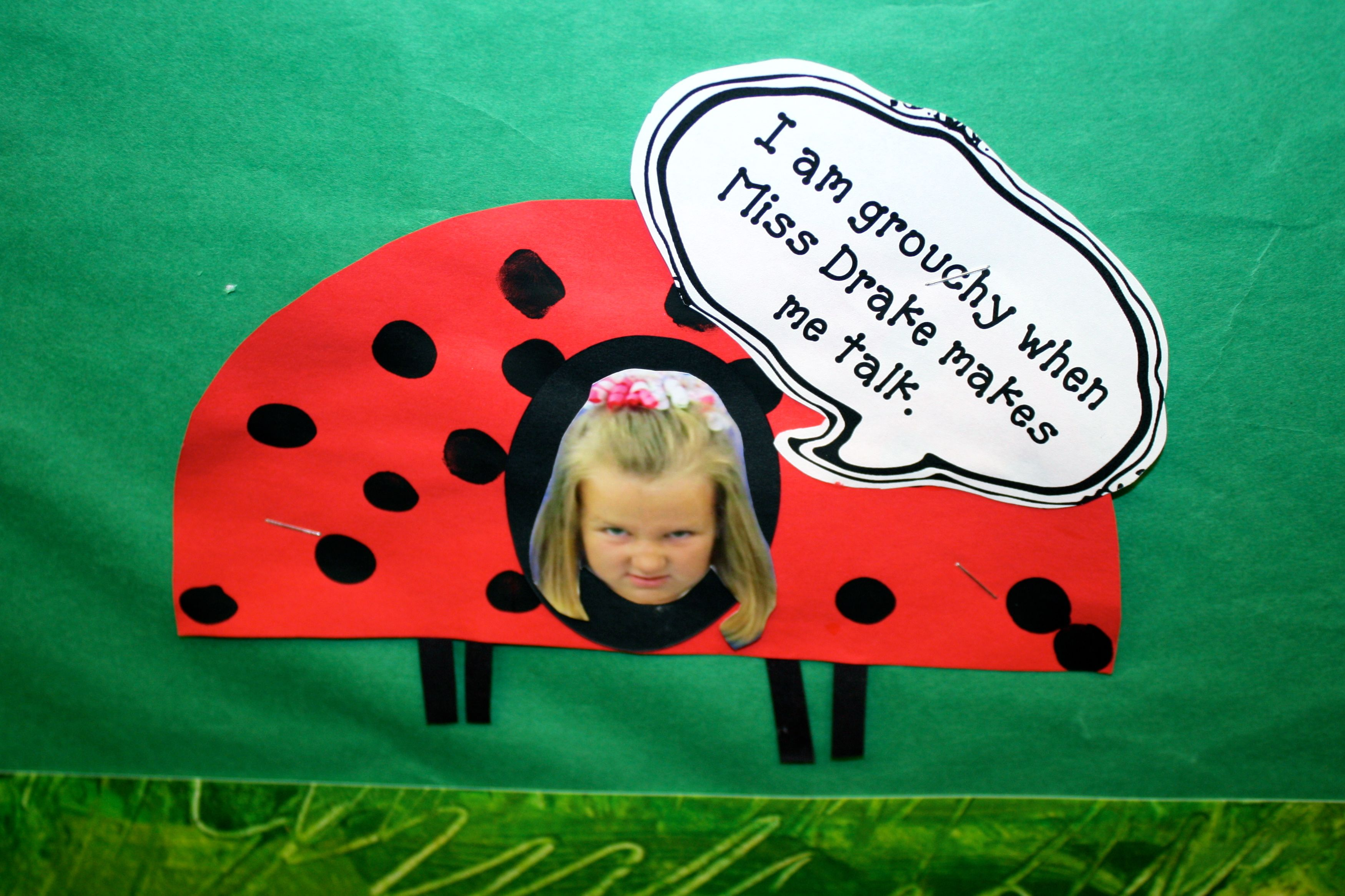 The Grouchy Ladybug With Images