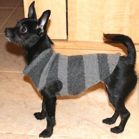 recycled-dog-sweater-fi
