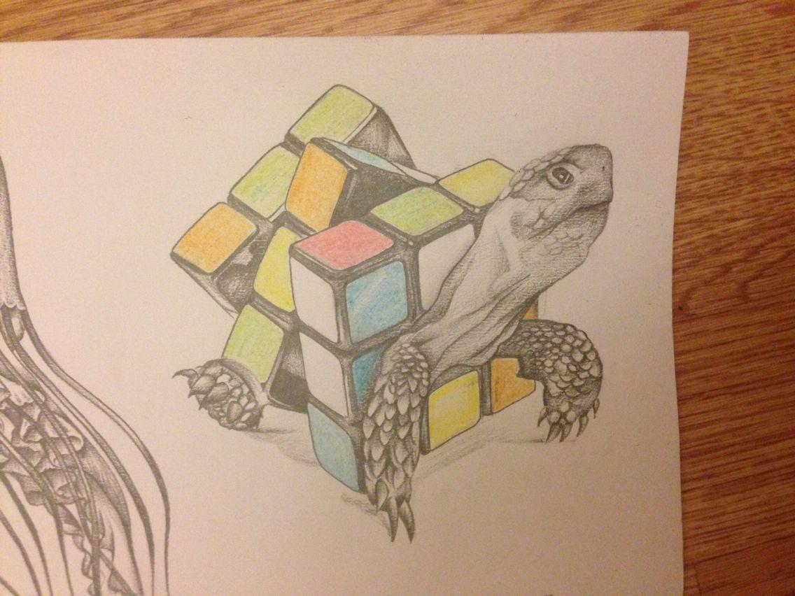 tortoise drawing for pinterest - photo #14