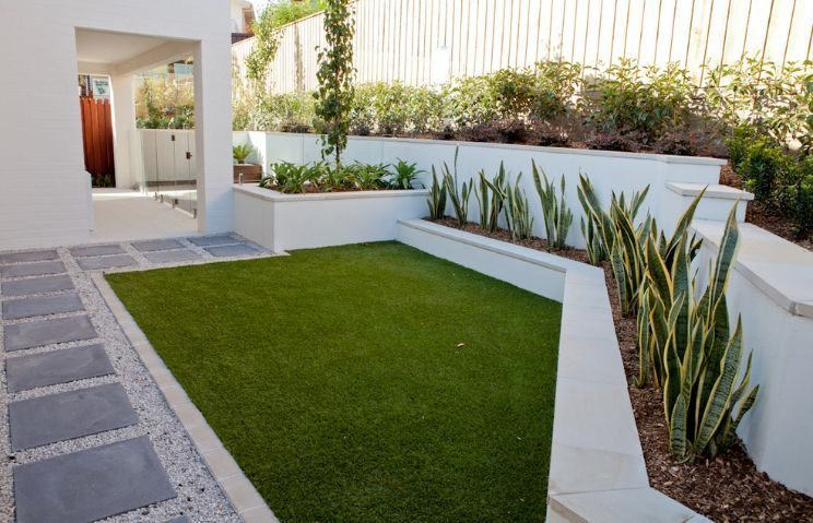 Snake Plants The Most Tolerant And, White Garden Rocks Perth