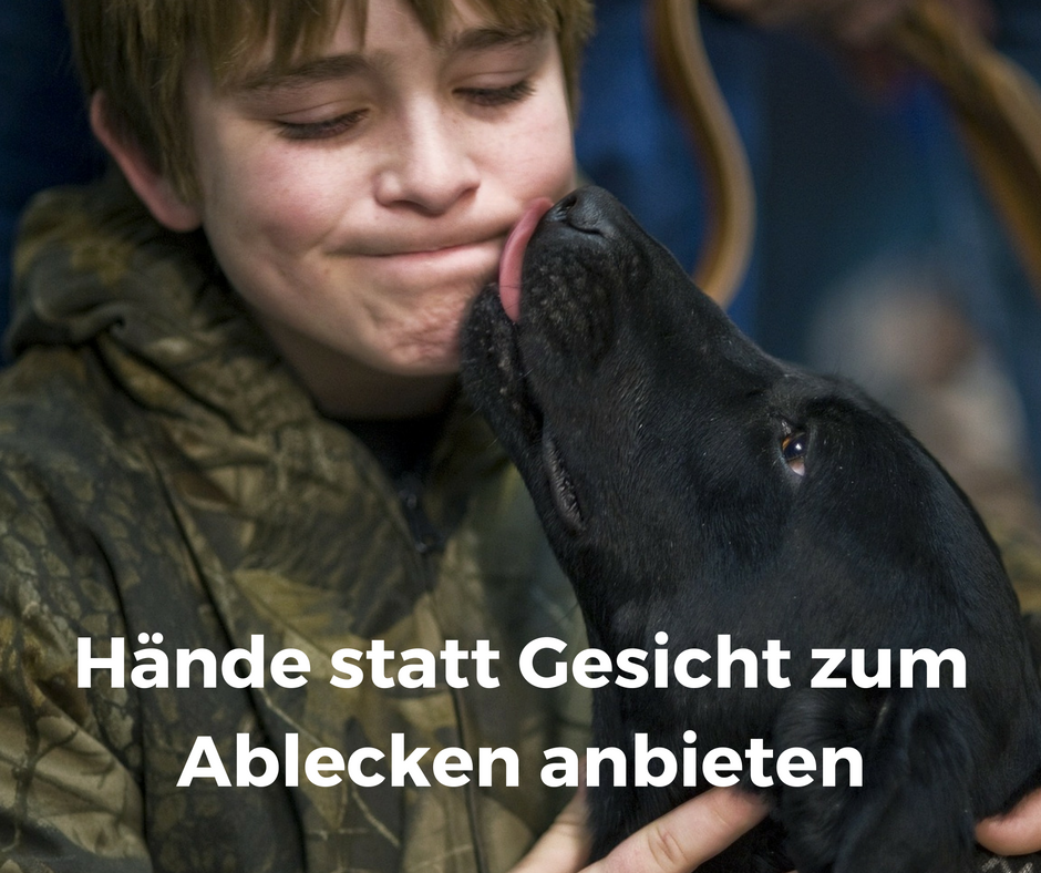 #Hunden lieber #Hände statt #Gesicht zum #Ablecken anbieten