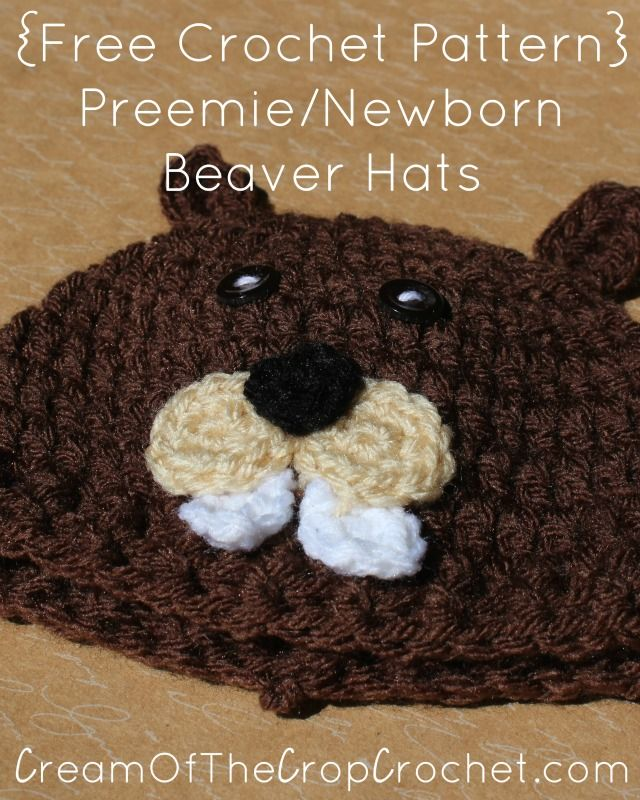 Cream Of The Crop Crochet ~ Preemie/Newborn Beaver Hats {Free Crochet Pattern}