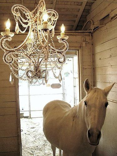 Beautiful Decorating With Chandeliers Ideas | Chandelier ...
