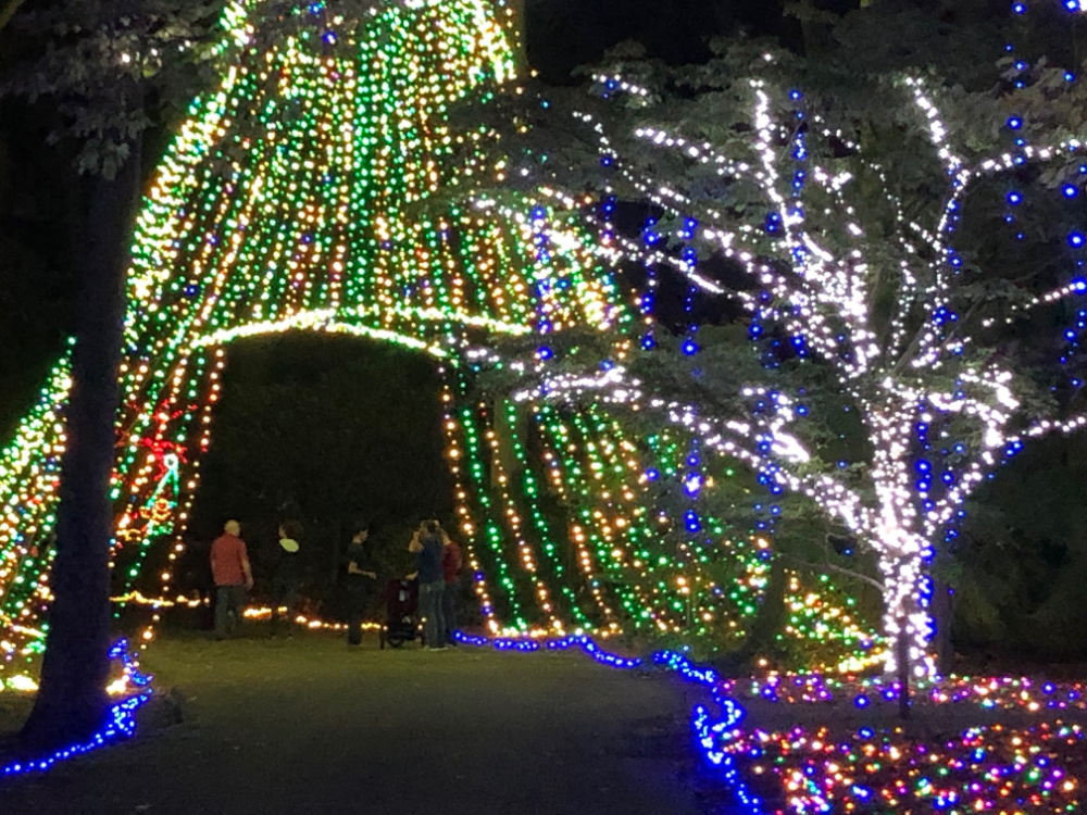 d5a47852037a581f635cf4c9d1532cc1 - Busch Gardens Williamsburg Christmas Town Discount Tickets 2019