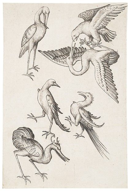 6 Of Birds From The Large Playing Cards Master Es Artist