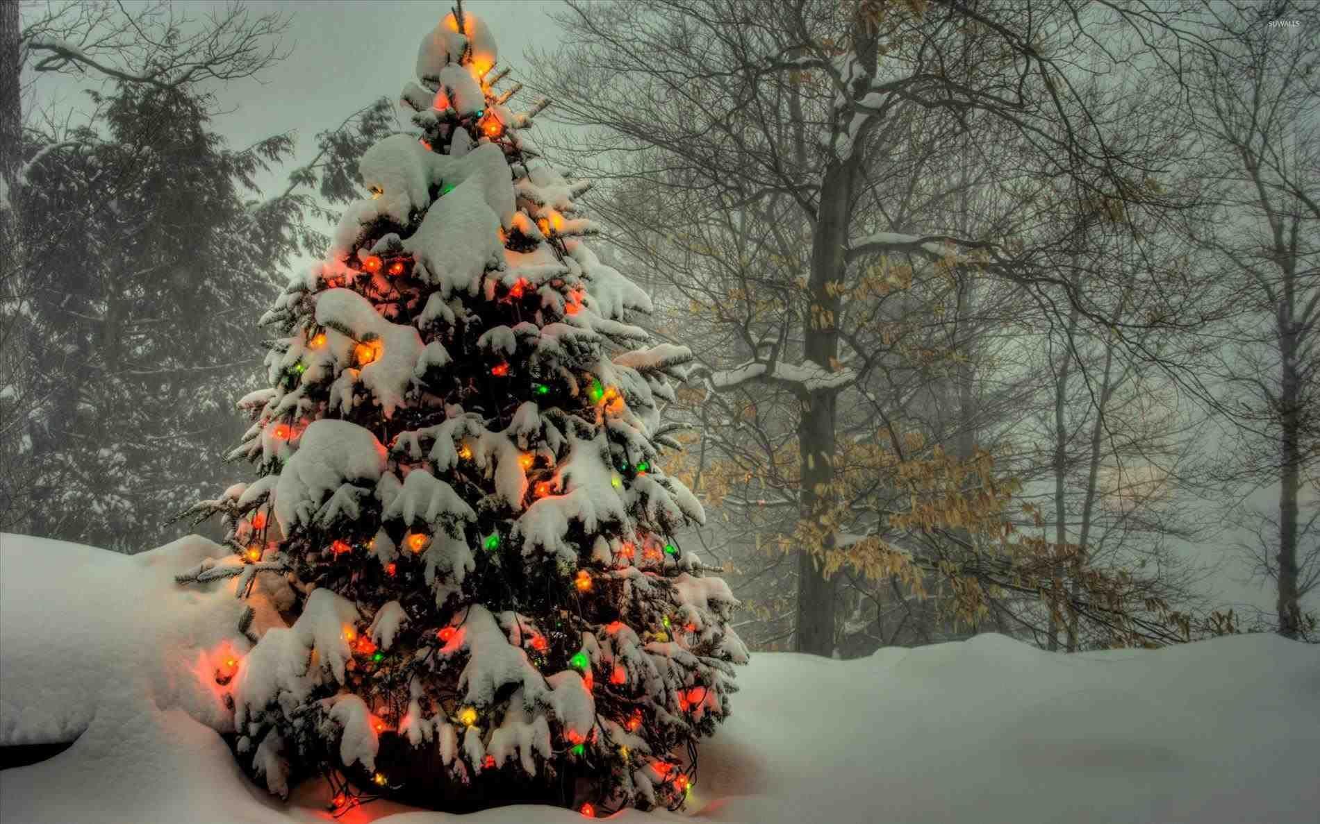 New Post norman rockwell christmas tree | Decors Ideas | Pinterest ...
