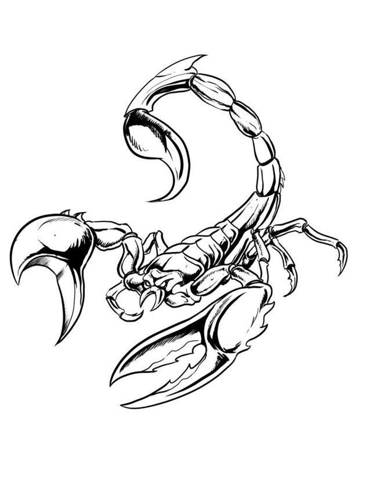 Printable Scorpion Coloring Pages Scorpions Are Poisonous Insects From The Arachnida Class Which Are Often Seen Scorpion Tattoo Tattoo Stencils Animal Tattoos
