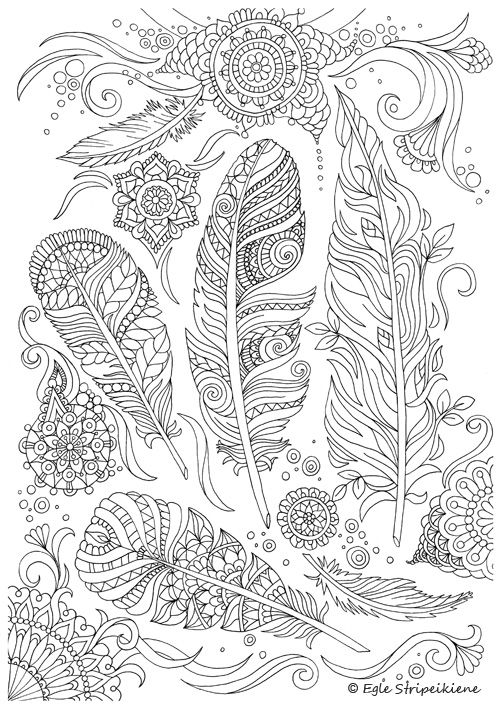 Coloring Page For Adults Feathers By Egle Stripeikiene Size A3