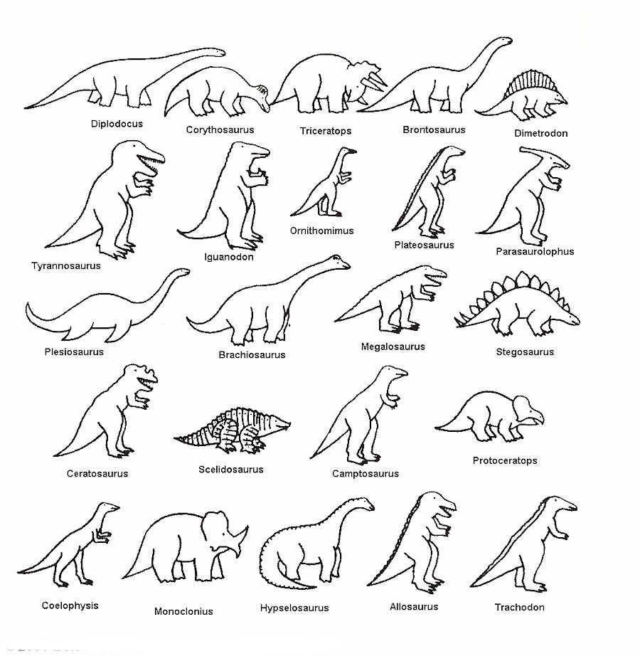 dinosaurio imagen para colorear  Dinosaurios para colorear