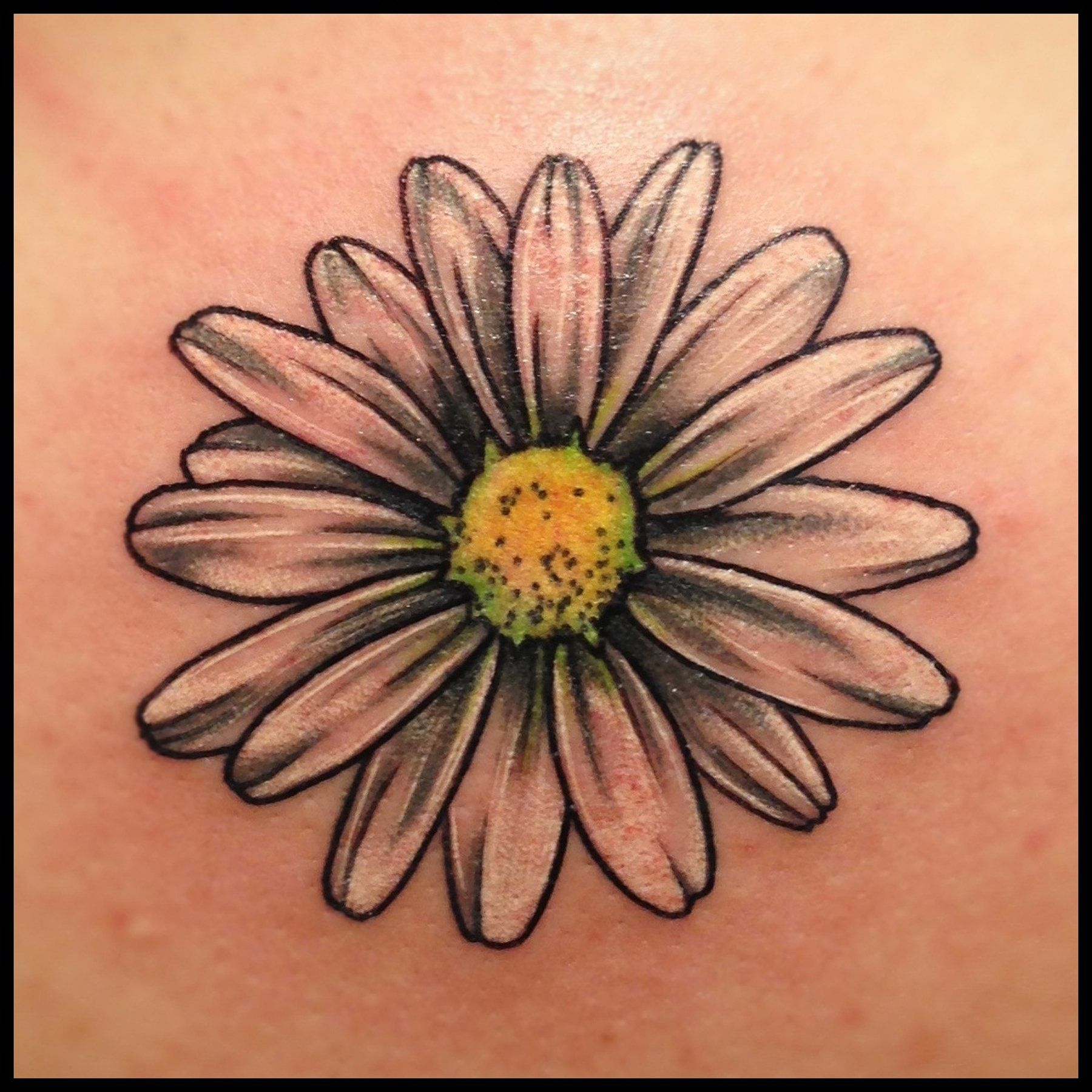 Daisy......I Like This Or Maybe A Bunch Of Different
