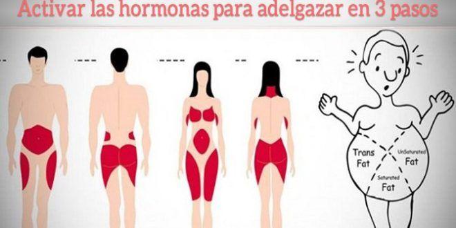 Cómo activar las hormonas para bajar de peso