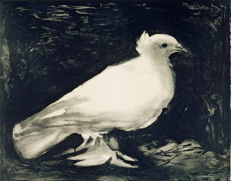 Pablo Picasso---Dove 1949