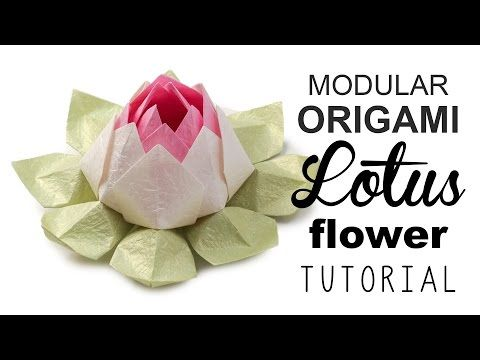 Modular origami lotus flower video tutorial paper kawaii modular origami lotus flower video tutorial paper kawaii mightylinksfo
