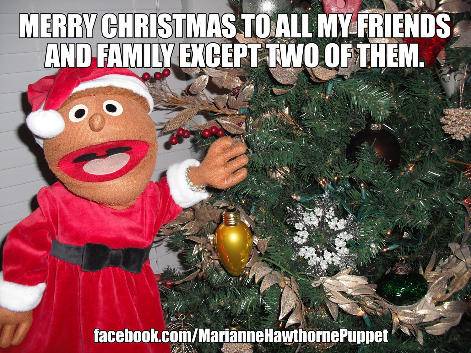 Funny Christmas Memes For Friends : Merry christmas to all my friends and family except two of