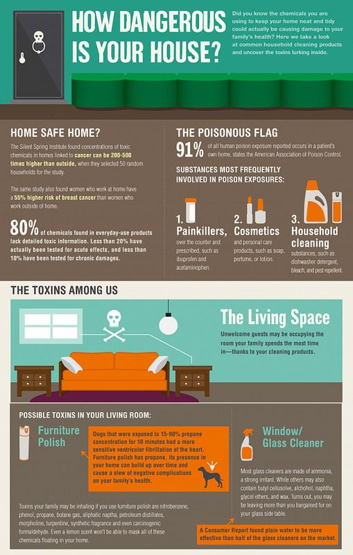 How Dangerous Is Your House Infographic Health Wellness Health
