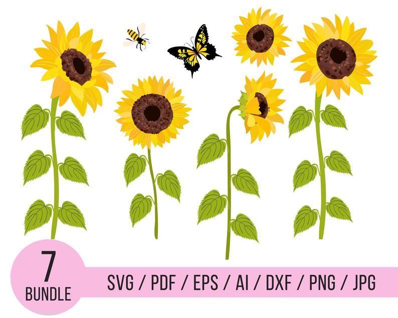 Download Sunflower svg Sunflower monogram svg Flower svg Sunflower ...
