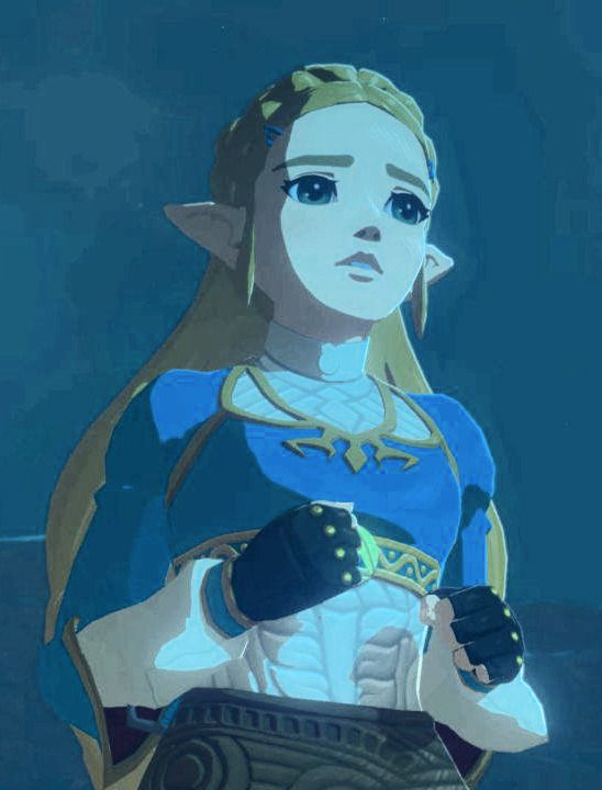 Photo of The BOTW Art Reference Collective — Princess Zelda (part 1) Bonus: