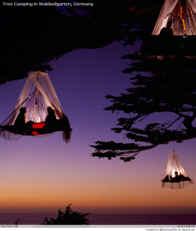 The Best Places to GO Camping (in Summer)   Tree camping ...