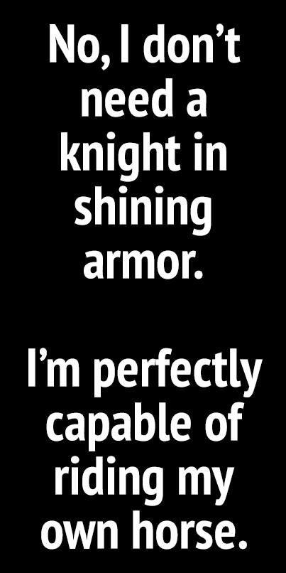 Knight shining armor lame