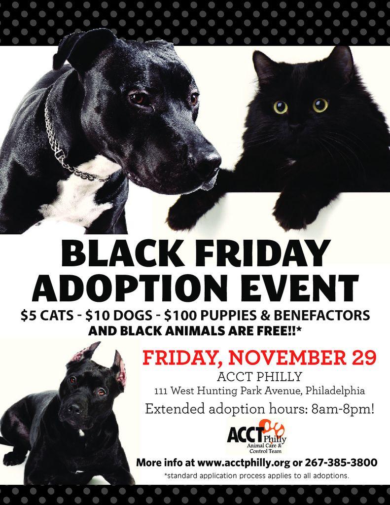 Black Friday Adoption Event Rescue Ideas No kill