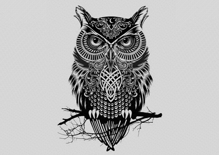 Tribal owl tattoos on pinterest tattoo outline drawing for Tribal owl tattoo
