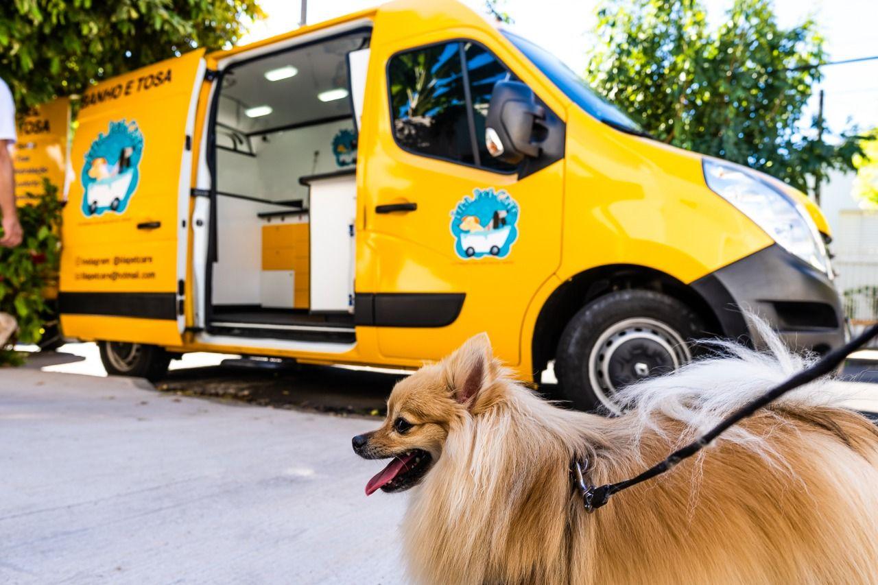 Lila Pet Truck