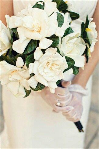 Bridal Bouquet Of White Gardenias Dark Emerald Foliage Gardenia Bridal Bouquet Gardenia Wedding Bridal Bouquet