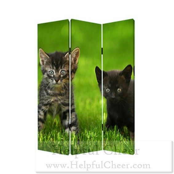 Curious Cat 3-panel Canvas Screen - at - 0153 - Your Online Home Decor Store