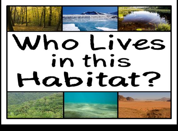 Habitats ks2 teaching ideas