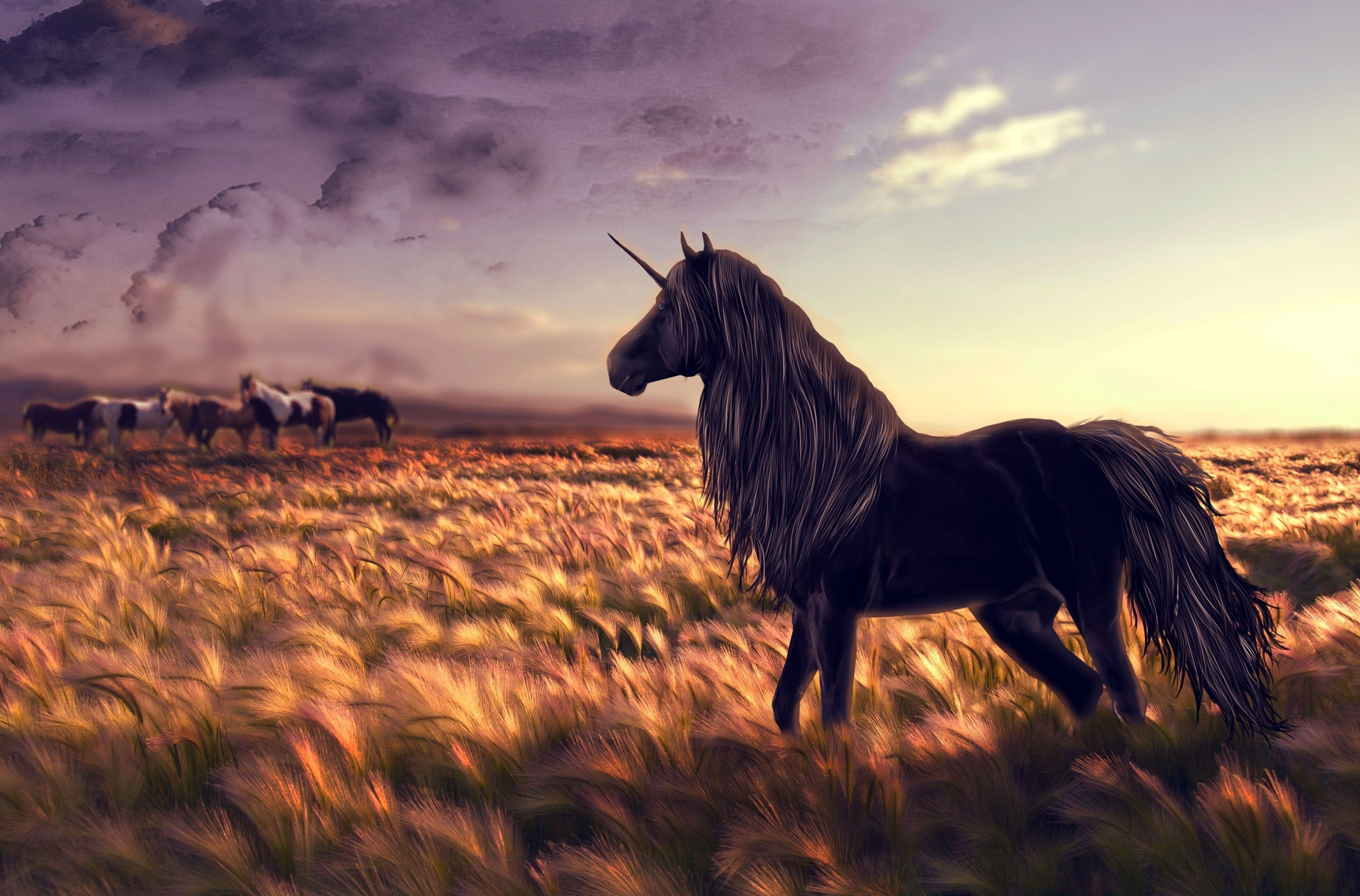Fantastic Wallpaper Horse Windows - d5aef0902ce0974dd39ab5a6699bbfb6  Photograph_85837.jpg