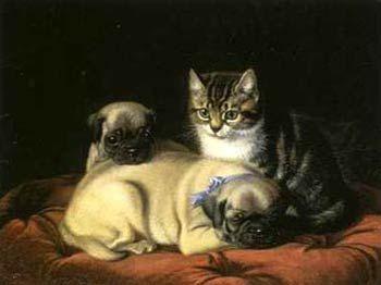 Pugs And Pug Puppies Pugs Dogs Pug Puppies