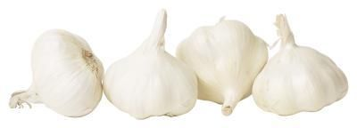 Garlic naturally repels some species of beetles. #robbynackner