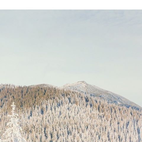 Doesn't a secluded mountain getaway in the Rockies sound nice?  #FareCompare