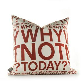 Why Not in Scarlet and Soy Pillow
