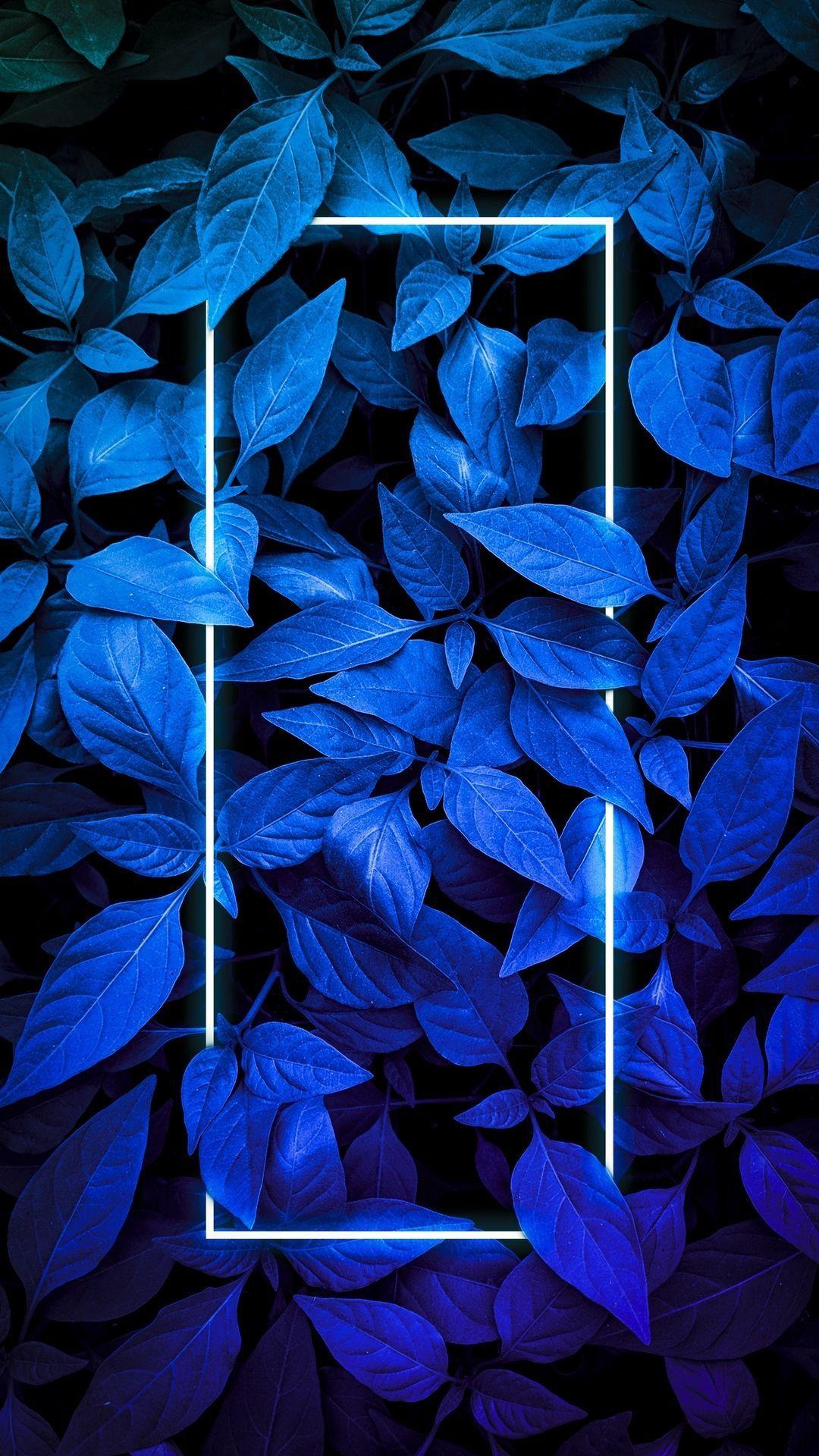 Apple Iphone Wallpaper Iphone Wallpaper Photos Blue Wallpaper Iphone Neon Light Wallpaper