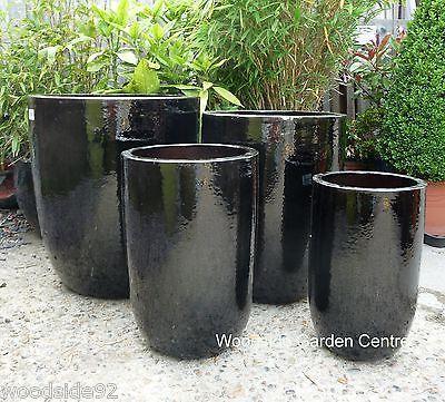 Large Black Glazed U Planters Garden P*T Woodside Garden 400 x 300