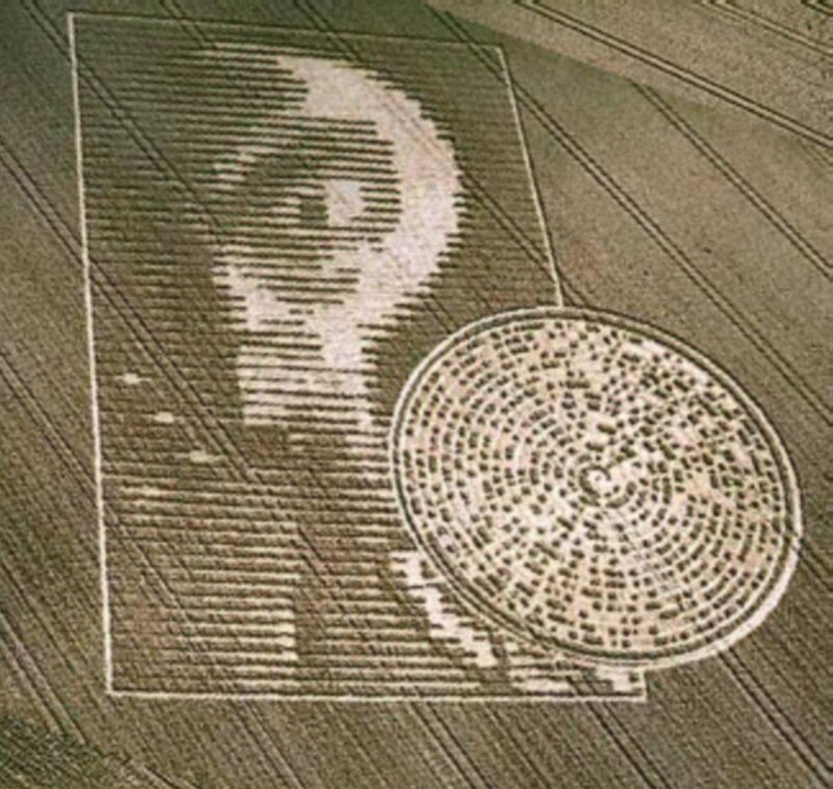 alien crop circle response -#main