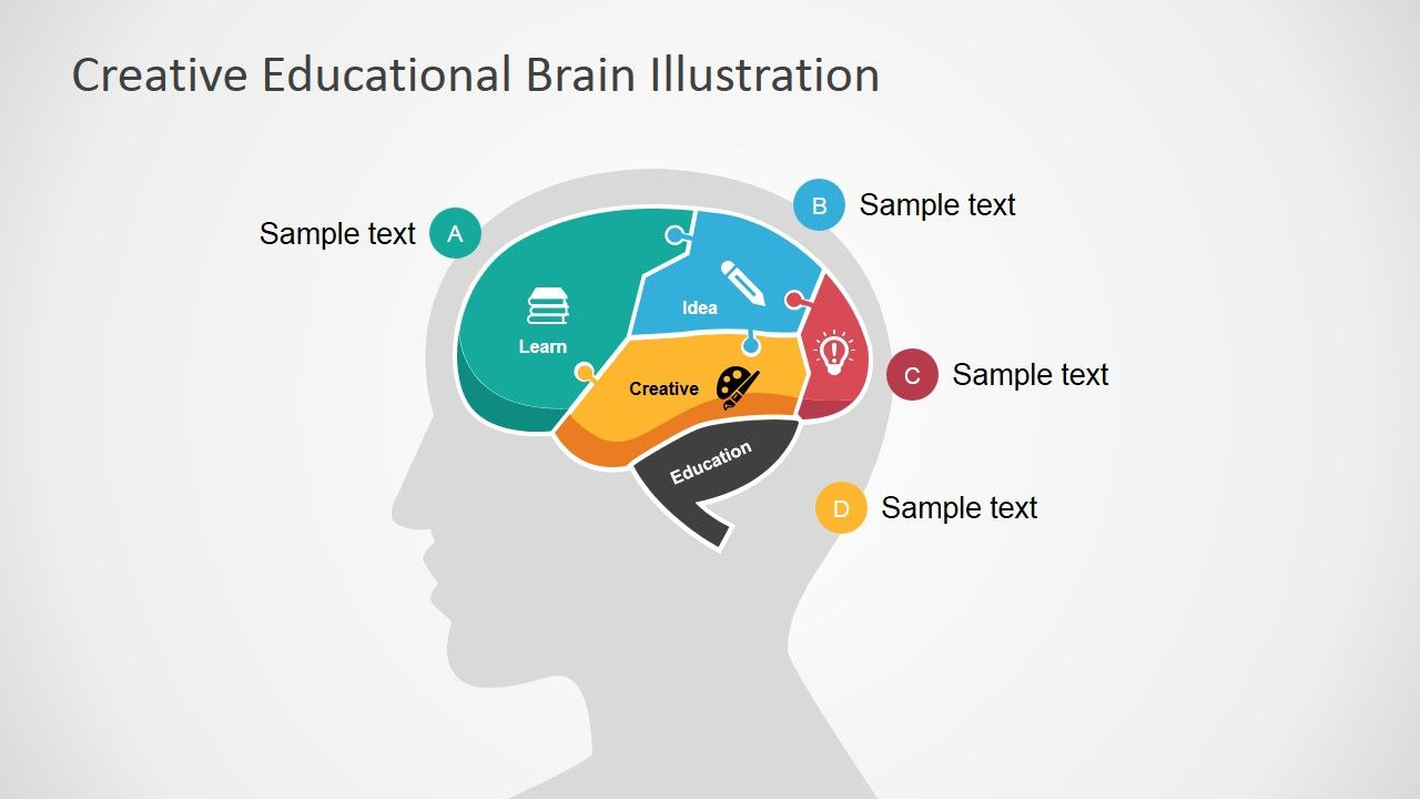 Creative Educational Brain Powerpoint Template Powerpoint Shapes