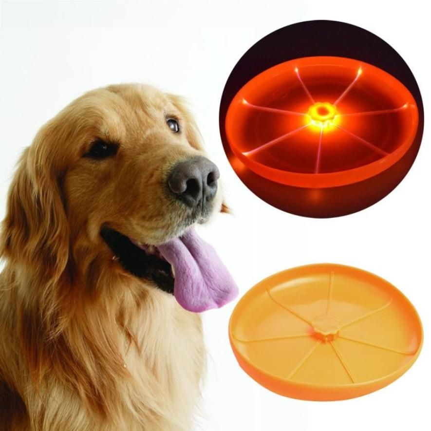 Flying Flexible Disc Large Dog We Don T Offer The Choice Of Color