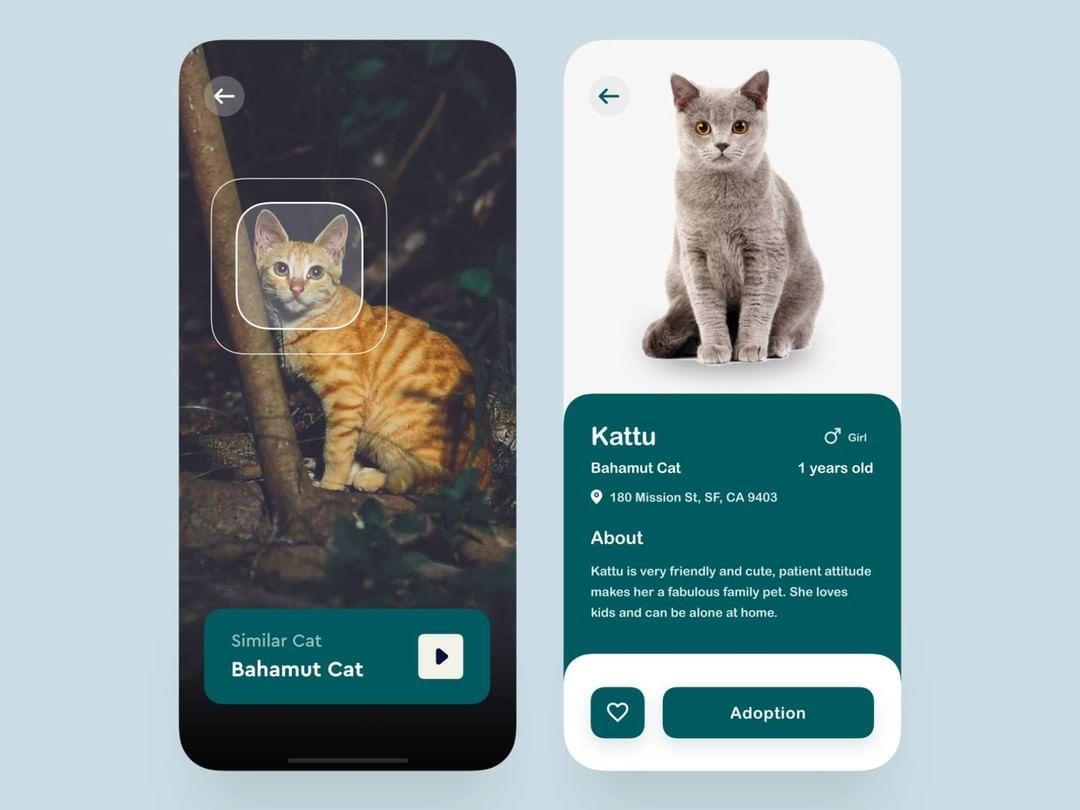 Pet Adoption App By Nas On Pet Adoption Pets Adoption