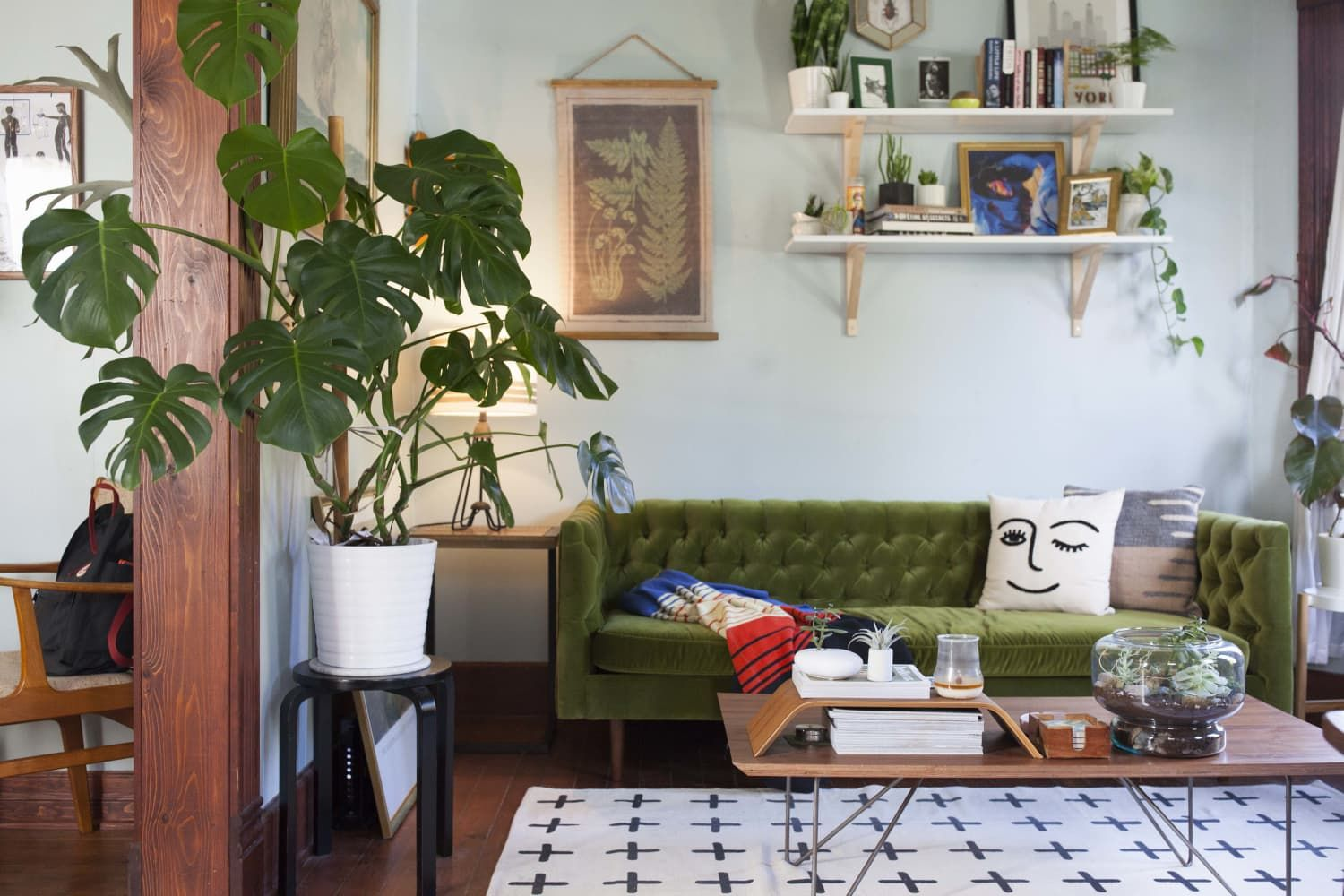 7 Online Stores To Buy Plants Living Room Decor Rules Decor