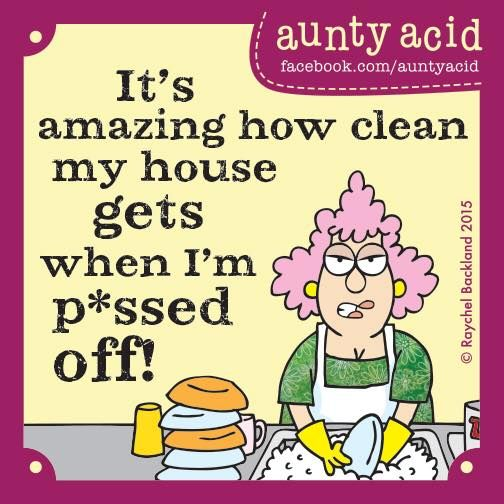Clean My House it's amazing how clean my house gets when i'm pissed off or upset