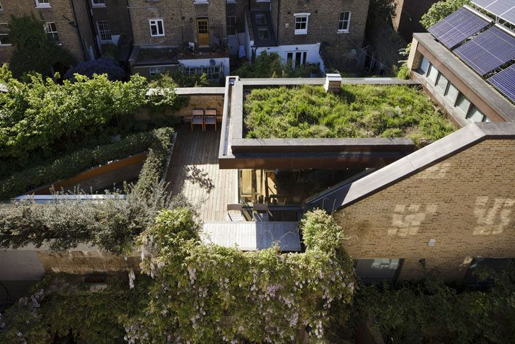 Four Roof Gardens And Forty Birch Trees The Muse In London
