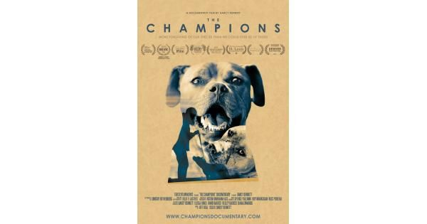 Watch Champions Full-Movie Streaming