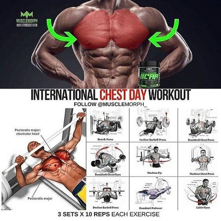 Фото упражнения для разной группы мышц