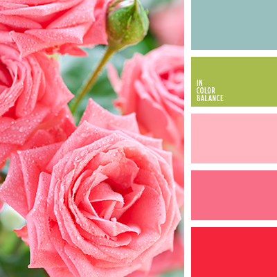 Best 25 Pink Color Combination Ideas On Pinterest
