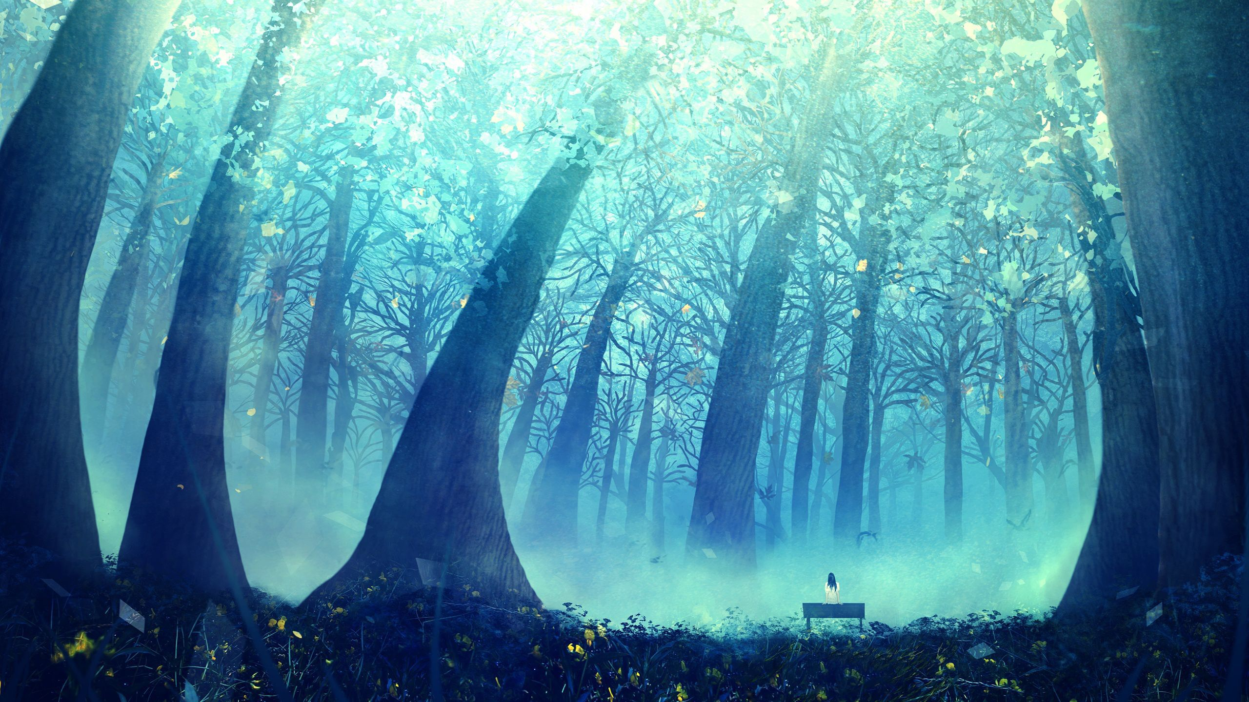 55611 Anime Scenery Deep Blue Forest Jpg 2560 215 1440