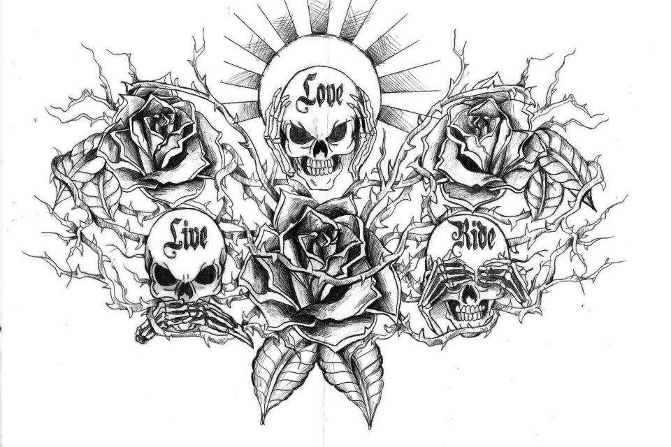 Dessin Tete De Mort Avec Rose : rose t te de mort dessins pinterest robins ~ Melissatoandfro.com Idées de Décoration