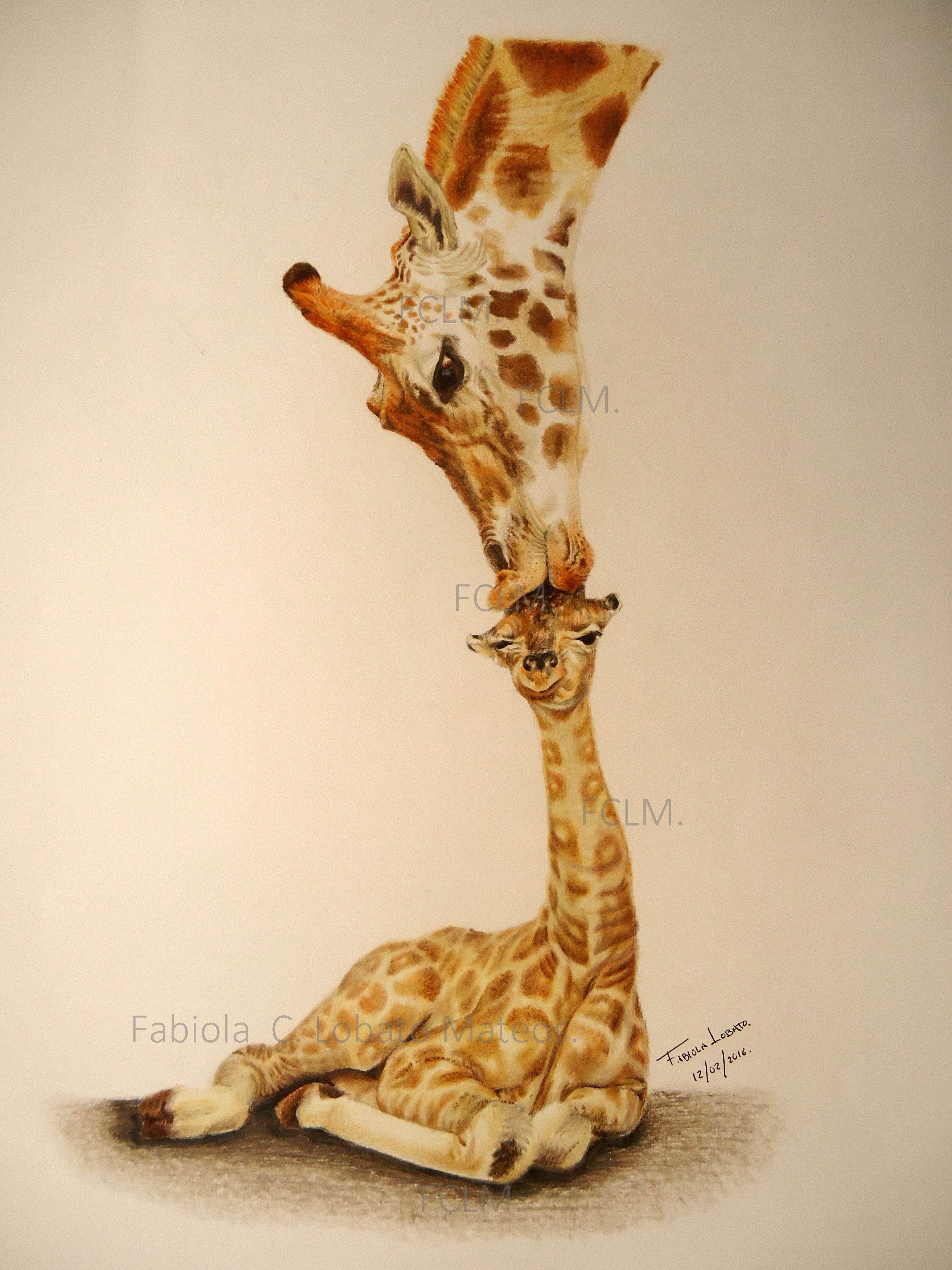 Dibujo Con Lapices De Colores De Una Madre Jirafa Con Su Bebe Color Pencil Drawing Of A Giraffe Mom With Her Baby Art Sketches Drawings Art